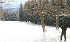 Feb. 2010: Weidenbach
